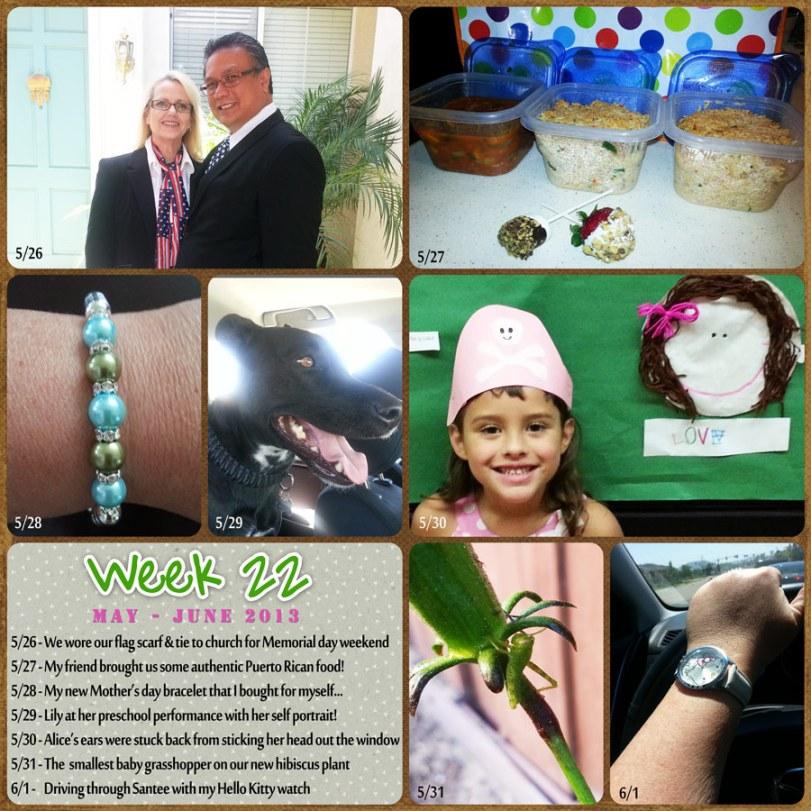 2013_week_22